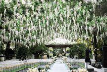 wedding :3
