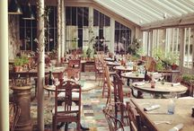Foodie New Forest / Foodie treats around the New Forest