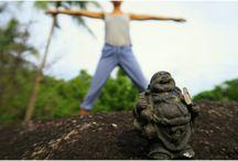 Yoga / Parce que le yoga ne se pratique pas que sur un tapis!