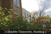 Glyndwr University / Glyndwr University, London has tied up with Aliff Overseas Education. 203, God Gift Tower, S.V. Road, Near Lucky Hotel, Bandra (West), Mumbai - 400050 (India) Visit our website – www.aliffoverseas.com