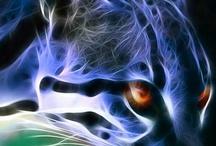 Aura: Fractal Animals
