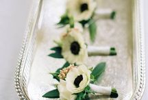 the groom / floral boutonnieres