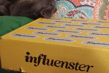 The Herd and their Treats! / The Herd got a @InfluensterVox #CatVsMouse Box from @TemptationsCats for review! #GotItFree