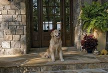 Pet Friendly Ideas / Animal lovers are always looking for ways to make their homes more pet friendly. You can incorporate design features into your home plan or you can add do-it-yourself projects as you go. Here are some creative ideas that may come in handy!