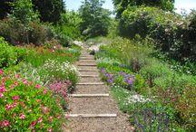 SA indigenous gardens