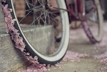 pink on wheels / by Dancing Paloma
