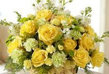 Yellow Flower Floral Display