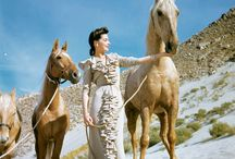 Dresses and Horses / In the beginning it was just dresses..... / by Jane Power