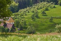Austrian Inspired
