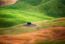 The colors of Val D'Orcia