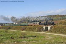 Foto di treni storici / Fotografie scattate a treni storici in diverse regioni italiane.