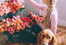 flower beautifull
