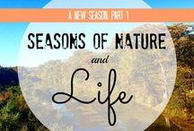 A New Season - Blog Series