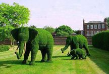 ☀ Topiary + Realistic Plant Sculptures ☀ / ☼☼☼  / by 🐦✨ Irena Ka🌙✨