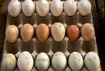 Æg kunst