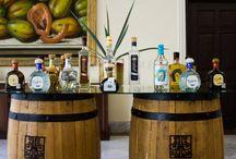 Tequila Tasting / by Casa Velas Hotel & Ocean Club