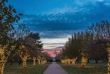 Hudson Valley Holidays / From Haunted Hay Rides to Maypole Dances, the Hudson Valley is a special place for the holidays, with numerous community events, special seasonal attractions and winter holiday lighting displays at the historic mansions along the Hudson River.