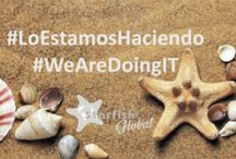 #LoEstamosHaciendo #WeAreDoingIT / updates on business and professional development of our clients and our company.