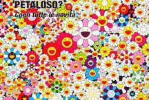 PETALOSO / Cogli tutte le novità :)