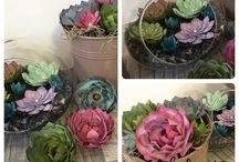 Succulent stamping up