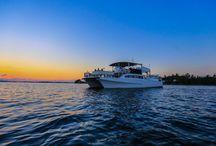 UberVida / Bermuda's Celebration Yacht