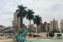 """"""" GOIANIA- CAPITAL DO CERRADO"""" - GOIÁS-BRASIL / Fotos da flora, fauna, paisagens e fotos da cidade e das pessoas que habitam."""