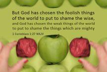1 Corinthians / Favorites from 1 Corinthians