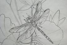 vlinders en vogels / vlinders en vogels