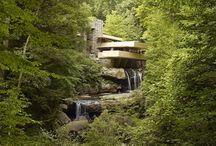 """Frank Lloyd Wright / """"Il miglior amico della terra dell'uomo è l'albero. Quando noi usiamo gli alberi con rispetto e parsimonia, noi abbiamo una delle più grandi risorse sulla terra."""" (Frank Lloyd Wright)"""