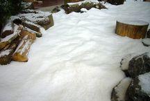 Display snow