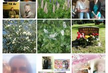 Collage Juni