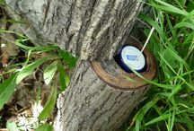 Hiding a geocache ideas  / by James N. Hill