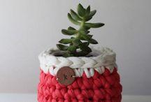 cestas plantas