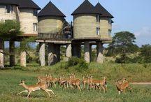 Kenya / Lodges and Camps of Kenya, Africa