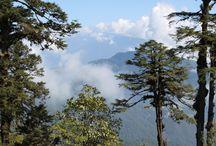 Bhutan / Bhutanese culture and landscape