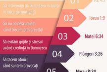 Orthodox Infographics