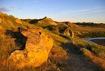 Go South Dakota / by Michelle Hernandez