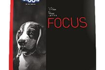 Buy Drools Focus Starter Dog Food at 4petneeds.com
