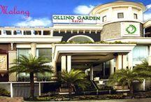 Hotel In Malang, East Java Indonesia / Informasi seputar Alamat Lengkap, Nomor Telepon, Tarif Hotel di Malang Indonesia dan Sekitarnya