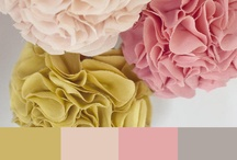 color swatches / by Holly King