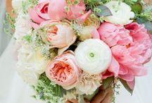 Wedding Flowers/Succulents / by Megan Tipton