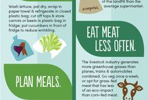 Food Informatics Infographics.