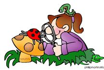 Thema natuur kleuters / Theme nature preschool / Thema natuur kleuters / Theme nature preschool