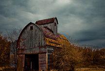 Barns / by Jayne Honnold