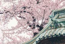 Japan ❤
