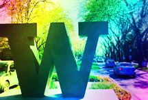 The Big W / MCD's University of Washington's Big W