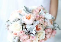 Flowers / by Mark Higgins