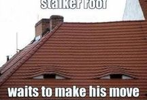Funny Roofing Memes / At IKO, we appreciate a good laugh and we know our roofing pros like a chuckle here and there too. Hopefully these hilarious roofing and construction memes will have you raising the roof with jokes in-between projects!