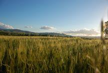 South Tuscany / Il sud della Toscana...