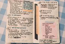 bible notebook